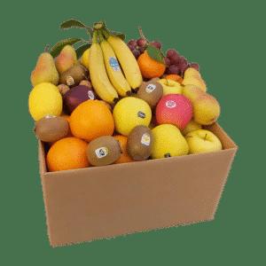 Cassetta Frutta Medium